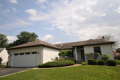 Roselle Single Family Home For Sale: 279 Mulford Lane