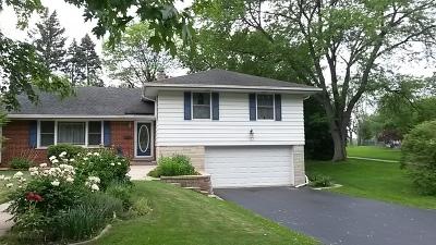 Villa Park Single Family Home For Sale: 117 West Leslie Lane