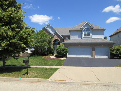 South Elgin Single Family Home For Sale: 2172 Brookwood Drive