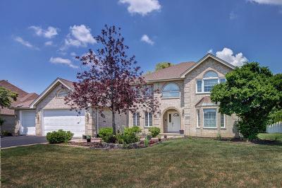 Frankfort Single Family Home For Sale: 10580 Lexington Lane