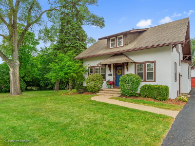 Downers Grove Single Family Home For Sale: 610 Davis Street
