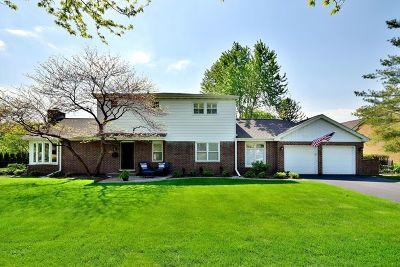 Elmhurst Single Family Home For Sale: 122 South Poplar Avenue