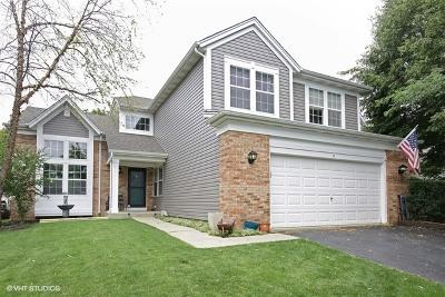 South Elgin Single Family Home For Sale: 9 Cedar Court