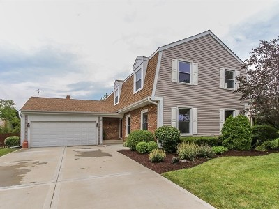 Schaumburg Single Family Home For Sale: 252 Continental Lane