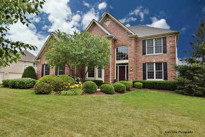 Geneva Single Family Home For Sale: 781 Fox Run Drive