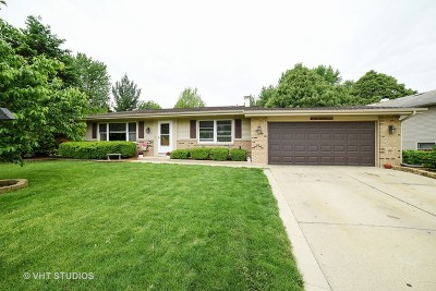Elgin Single Family Home Contingent: 1338 Sheffield Drive