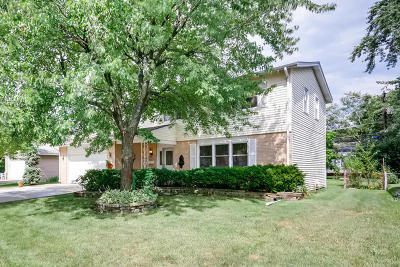 Mount Prospect Single Family Home For Sale: 1117 South Cherrywood Drive