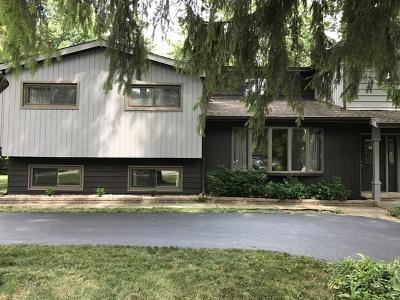 Addison Single Family Home For Sale: 4n331 Maple Avenue