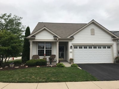 Huntley Single Family Home For Sale: 13576 Morgan Way