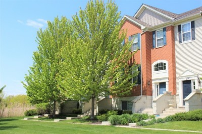 Gilberts Condo/Townhouse For Sale: 274 Jackson Street