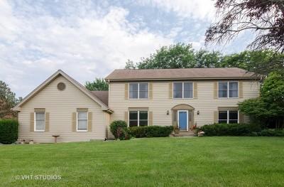 Sleepy Hollow Single Family Home For Sale: 222 Hawthorne Court