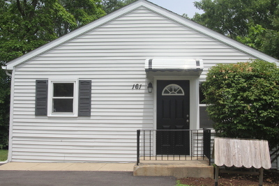 New Lenox Single Family Home For Sale: 161 East Francis Road