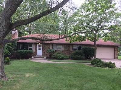 Downers Grove Single Family Home For Sale: 3950 Downers Drive