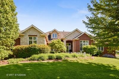 Orland Park Single Family Home For Sale: 11031 Royal Oaks Lane
