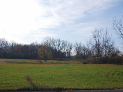 Braidwood Residential Lots & Land For Sale: 000 Madison Avenue & Hickory Street