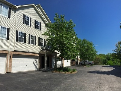 Gilberts Condo/Townhouse For Sale: 244 Evergreen Circle
