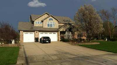 New Lenox Single Family Home For Sale: 22507 South Country Lane