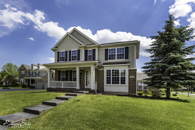 Lake Zurich Single Family Home Contingent: 1067 Apple Blossom Court