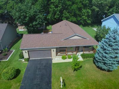 Carpentersville Single Family Home For Sale: 405 Vana Drive