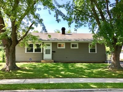 Carpentersville Single Family Home For Sale: 834 Navajo Drive