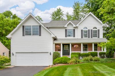 Glen Ellyn Single Family Home For Sale: 330 Anthony Street