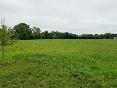 Bartlett Residential Lots & Land For Sale: 249 East Lake Street