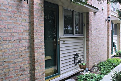 Winnetka Condo/Townhouse For Sale: 467 Linden Street