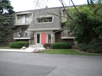 Naperville Condo/Townhouse For Sale: 148 East Bailey Road #M