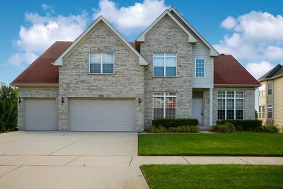 Hoffman Estates Single Family Home For Sale: 1693 Heron Way