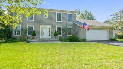 Lake Forest Single Family Home For Sale: 1088 Breckenridge Avenue