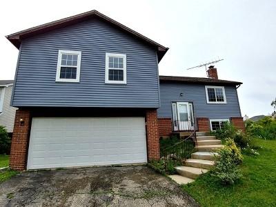 Carol Stream Single Family Home For Sale: 1312 Big Horn Trail