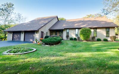 Crystal Lake Single Family Home For Sale: 5106 Nunda Trail