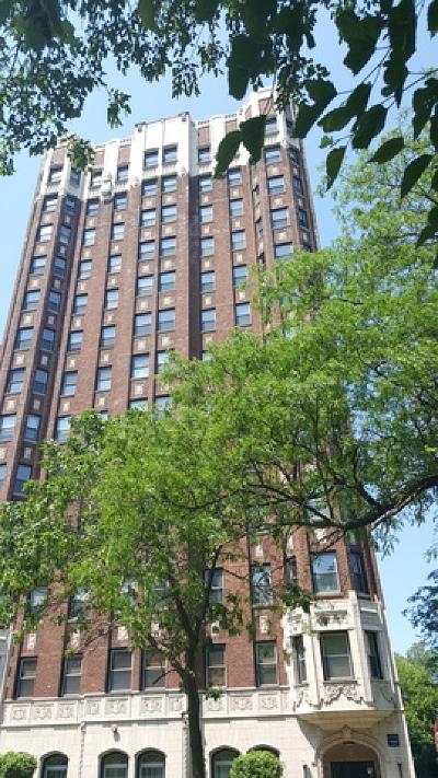 Condo/Townhouse Contingent: 5346 South Cornell Avenue #203