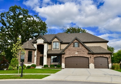 Orland Park Single Family Home For Sale: 14341 Oakwood Court