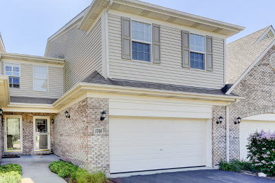Elgin Condo/Townhouse For Sale: 1245 Asbury Court