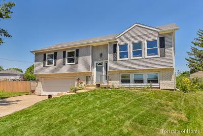 Carol Stream Single Family Home For Sale: 1019 Navajo Street