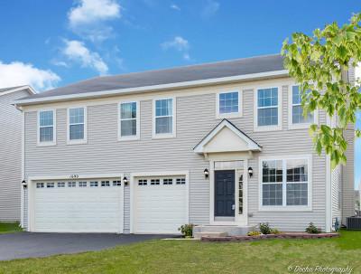 Hampshire Single Family Home For Sale: 1690 Fallbrook Drive