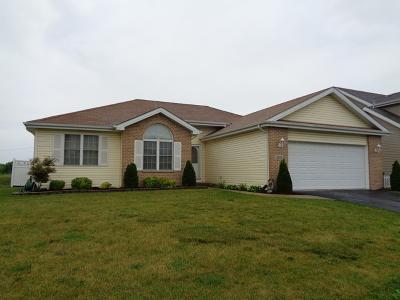Steger Single Family Home Contingent: 3202 Sandy Ridge Drive