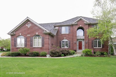 South Elgin Single Family Home For Sale: 1221 Countryside Lane