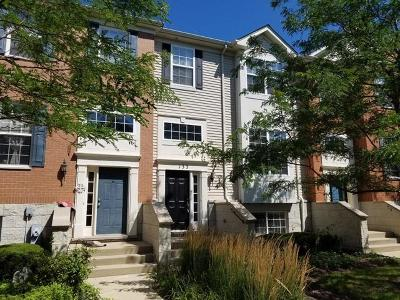 Gilberts Condo/Townhouse For Sale: 133 Willey Street #133