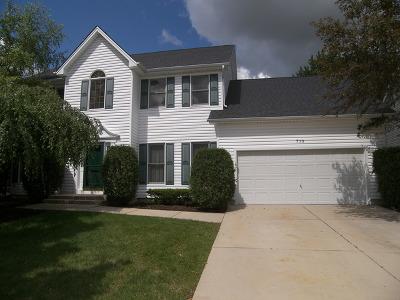Hoffman Estates Single Family Home For Sale: 710 North Hundley Street
