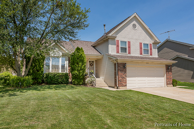 Schaumburg Single Family Home For Sale: 2300 Holmes Way