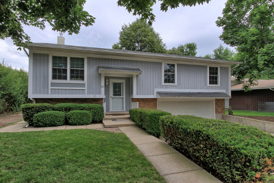 West Dundee Single Family Home For Sale: 625 Eichler Drive