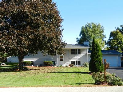 Elburn Single Family Home For Sale: 46w584 Locust Street