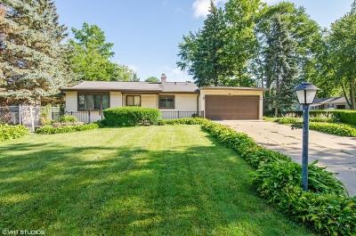 Carpentersville Single Family Home For Sale: 213 Fairway Road