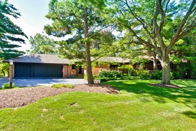 Barrington Single Family Home For Sale: 815 Dormy Lane