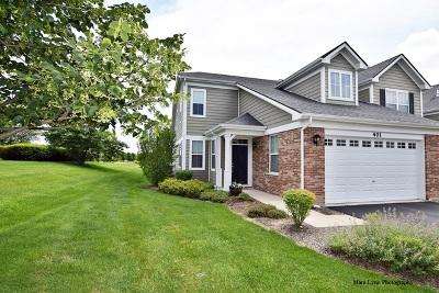 Elgin Condo/Townhouse For Sale: 401 Blackstone Avenue