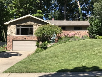Roselle Single Family Home Contingent: 804 Spring Street