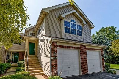 Carpentersville Condo/Townhouse For Sale: 5521 Liam Court #5521