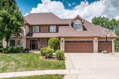 Woodridge Single Family Home For Sale: 1248 Richfield Court